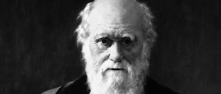 Darwin smúti